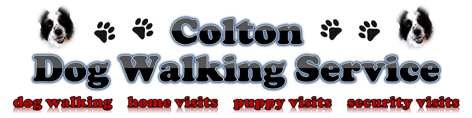 Colton Dog Walking Service